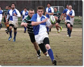 crusader_rugby