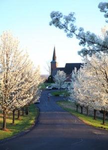 spring-christendom-chapel